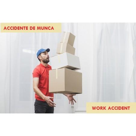 ACCIDENTE DE MUNCA - Bilingv